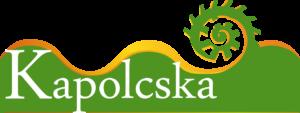Husszu_kaplcska_logo