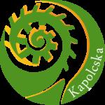 Negyzetes_kapolcska_logo